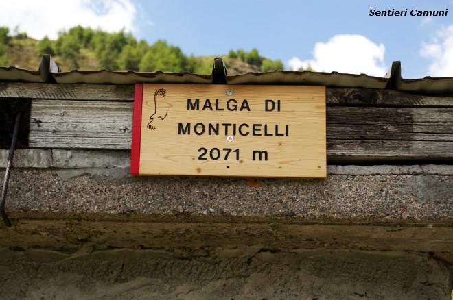 MONTICELLI_9
