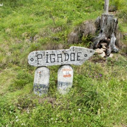 PIGADOIE5